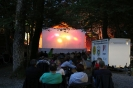 Freiluft 2014 Kino Open Air